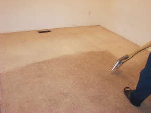 Carpet cleaning William Morris E17