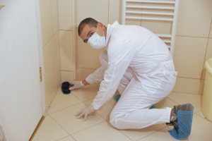 Pest control White City White City