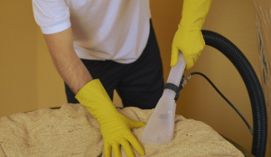 Upholstery cleaning in Westminster W
