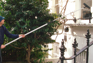 Window cleaning in Custom House E6