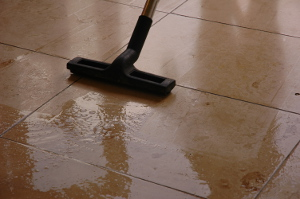 Hard floor cleaning Jubilee EN1