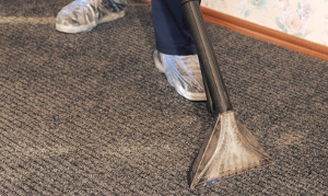 Carpet cleaning Leaves Green BR2